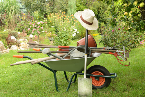 Gartenpflege hausmeisterservice r gen stralsund - Garten und landschaftsbau stralsund ...